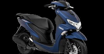 freego-s-2020-biru